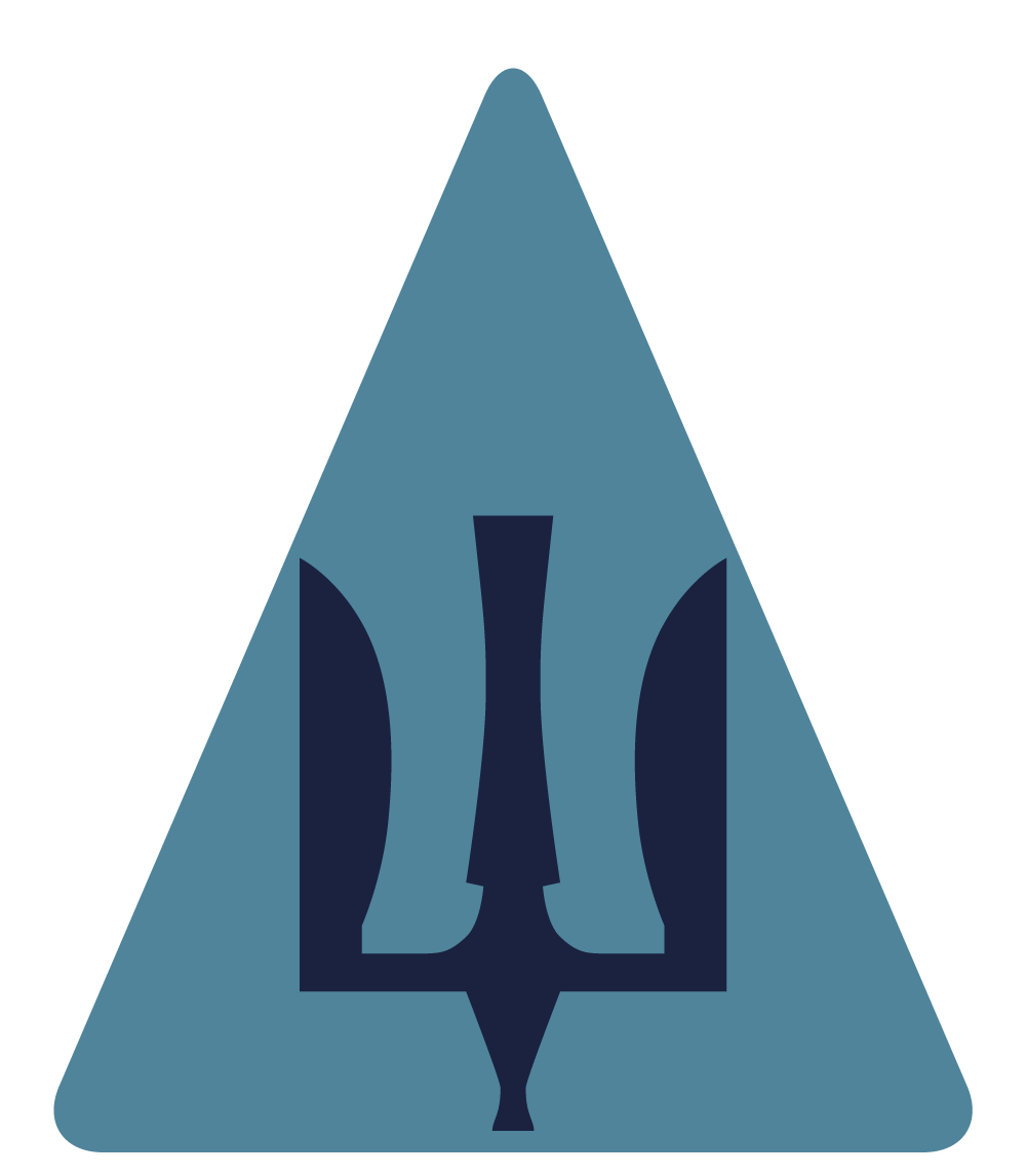 На основе разработанной нами эмблемы инициативная группа по разработке новой формы и символики Вооруженных Сил предложила сделать видовой патч для всех Воздушных Сил, который впоследствии был утвержден Министерством обороны Украины.