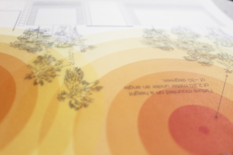Завдяки накладанню кальки на папір, добре видно, де розташовується джерело світла і яке саме потрібно освітлення для крони зарозумілої рослини