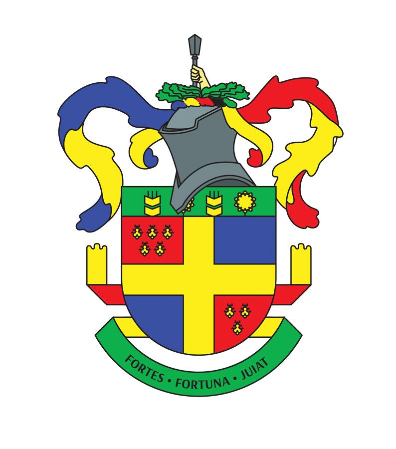 В основу герба лег испанский щит - традиционная форма для украинской геральдики.